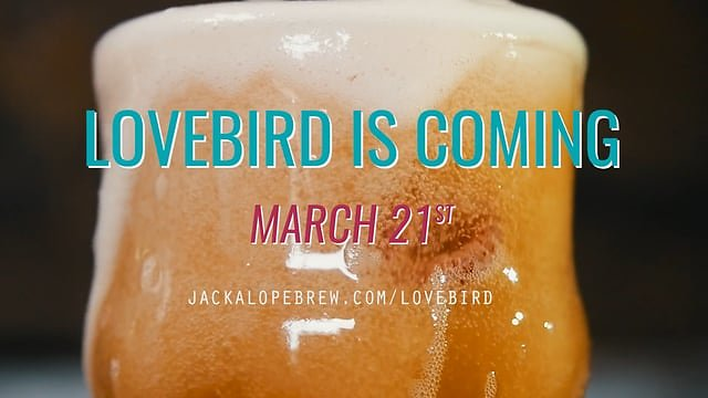 Jackalope Brewing Company - Lovebird is Coming
